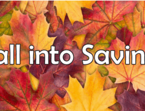 Fall into Savings Sale
